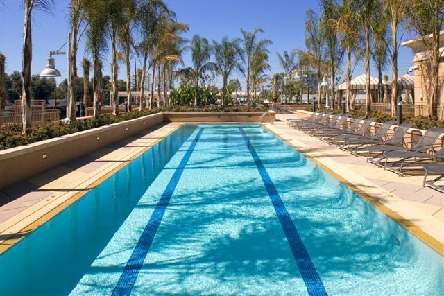 The plaza condos irvine orange county condo homes - Menzies hotel irvine swimming pool ...